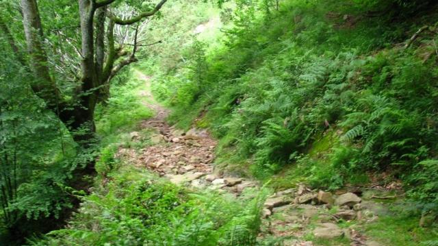 Randonnée de Xorroxin - Navarre