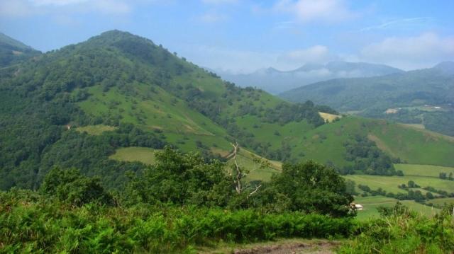 Randonnée Ahaize - Pays Basque - Basse Navarre - Coupdecoeurbasque.fr