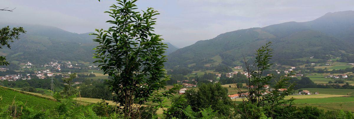 Randonnée Ahaize - Basse Navarre - Pays Basque - coupdecoeurbasque.fr
