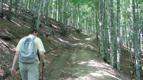 Randonnées en Basse Navarre